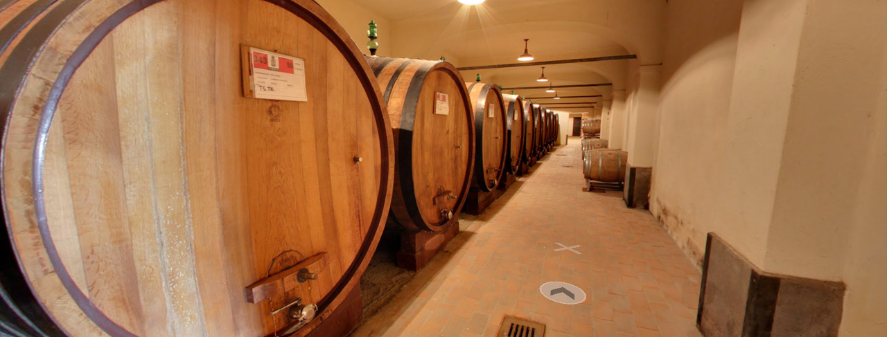 Tour of our wine cellars